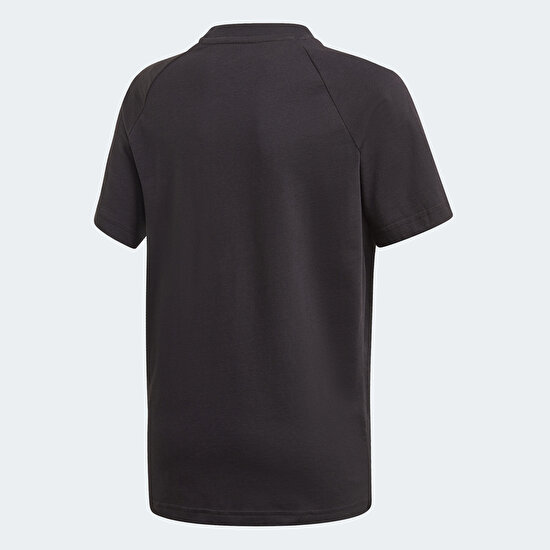 Picture of Adicolor Graphic Tee